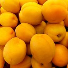 Farmers Market - 8 x 10 frame Print Art Photography peach plum yellow